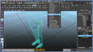 blue vision maya animation course